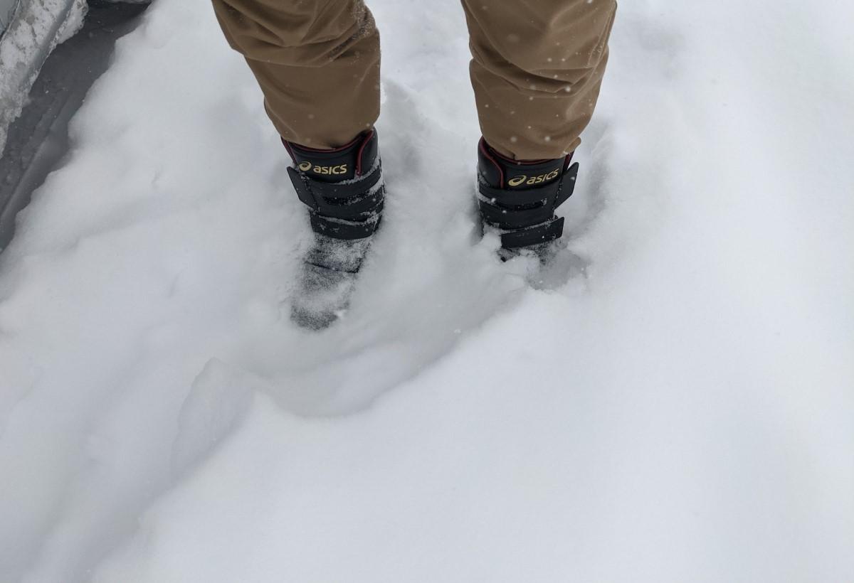 現地調査。。。大雪